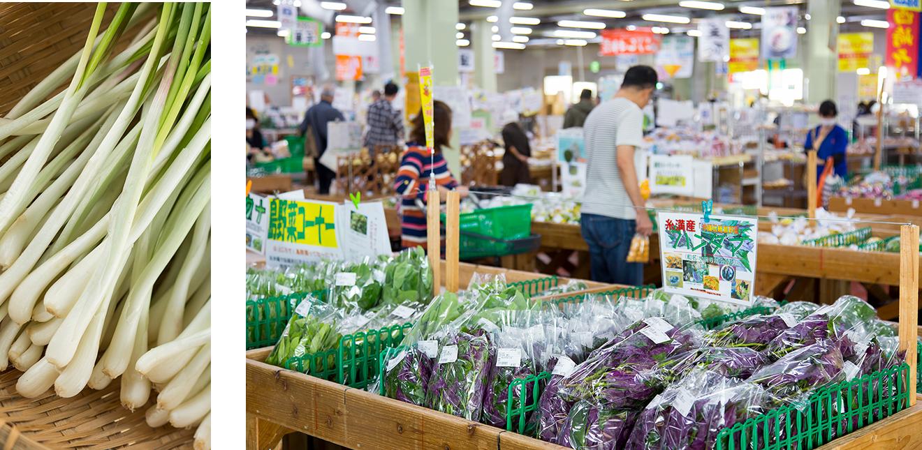 OKINAWA 五感でめぐる食の島