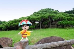 マハエ 久米島