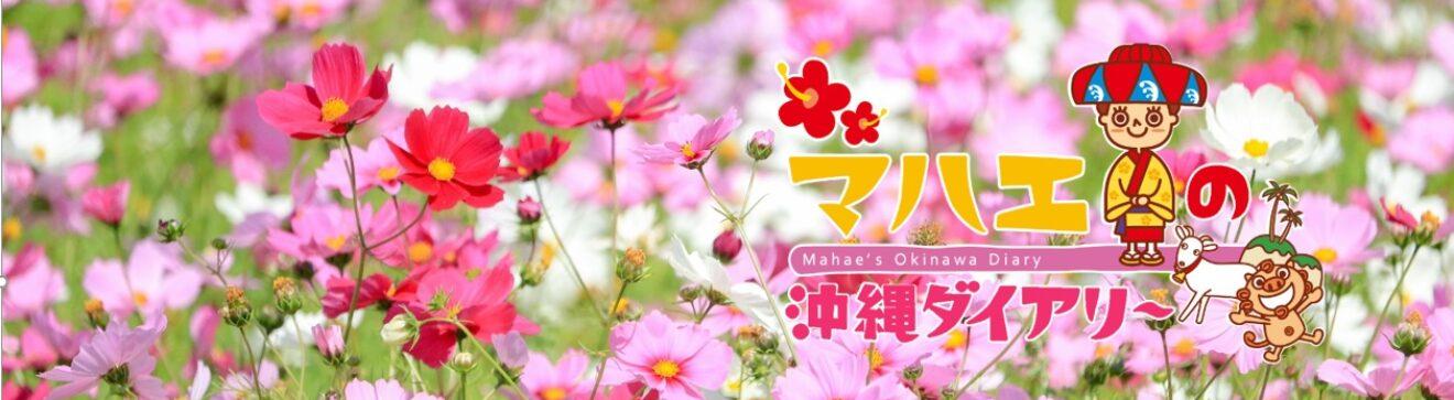 マハエの沖縄ダイアリー