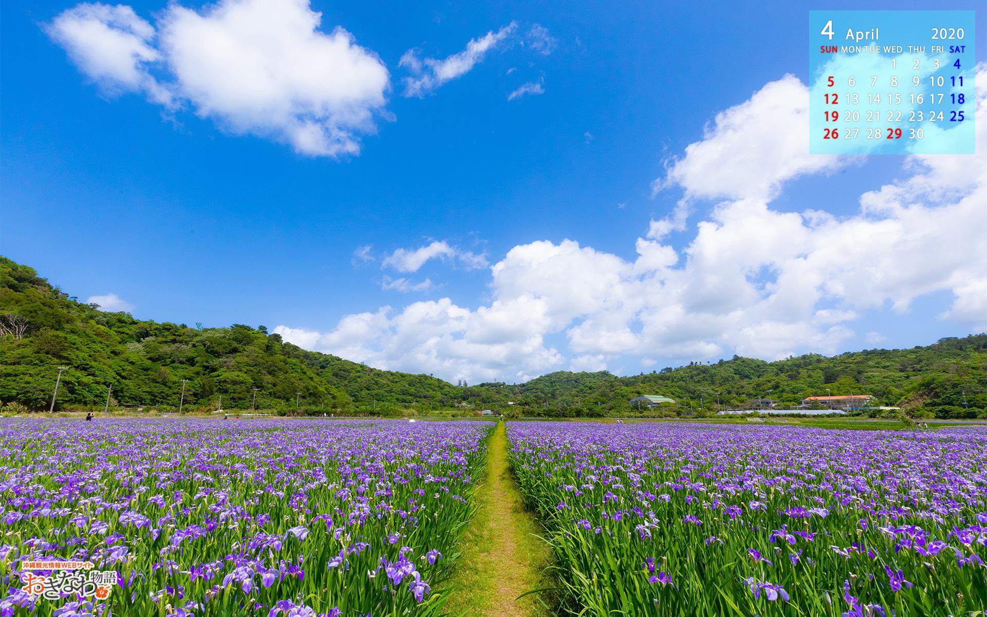 4月の壁紙カレンダー お知らせ トピックス 沖縄観光情報webサイト おきなわ物語